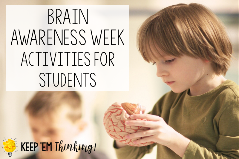 Brain Awareness Activities